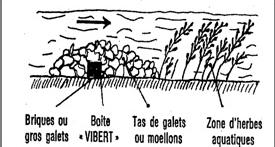 vibert02